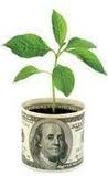 money_planter